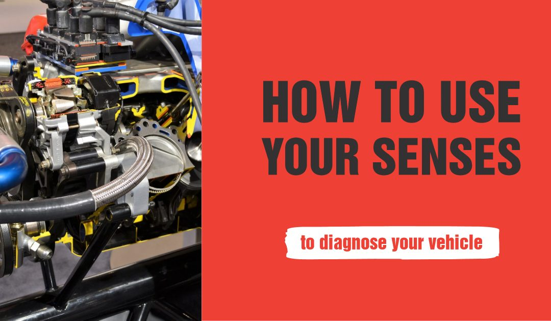 Sight, Smell, Sound, and Touch – How to Use Your Senses to Detect a Problem with Your Vehicle